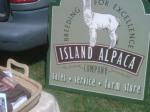 Alpaca Stall