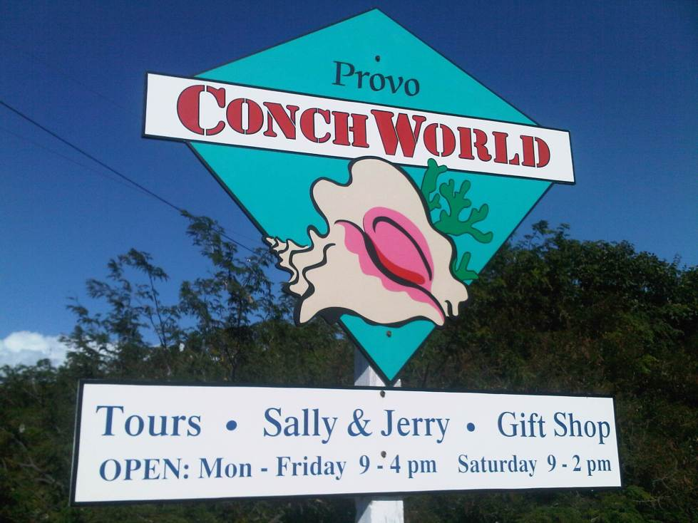Turks and Caicos Conch World